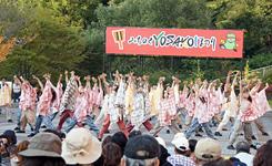2011michiyosa2